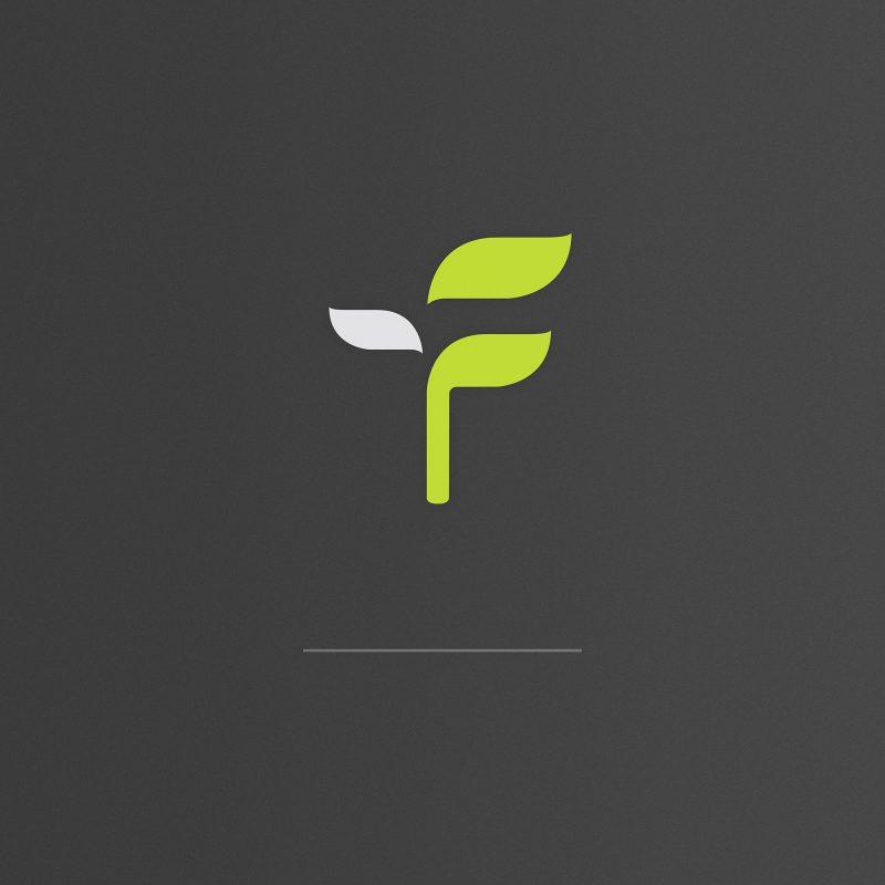 logo design, identyfikacja marki, branding, brand book, znak graficzny, logo firmy, ci, wizytówki, Fundacja Siewca - logo, art designer - Ireneusz Bloch