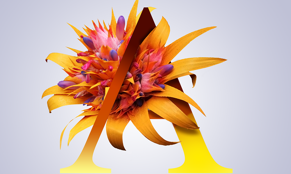 projekty graficzne, design newspaper, ilustracja, concept art, key visual, art designer Ireneusz Bloch