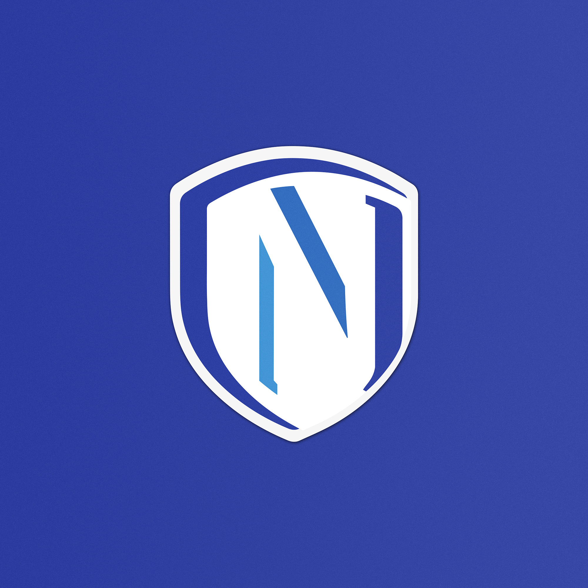 logo design, identyfikacja marki, branding, brand book, znak graficzny, logo firmy, ci, Nabór PCSS, art designer - Ireneusz Bloch